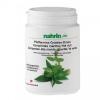Зеленый чай с мятой, драже 75 гр. Nahrin
